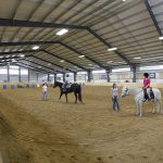 rosati-group-windsor-essex-therapeutic-riding-association
